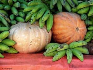 Бананы и тыквы