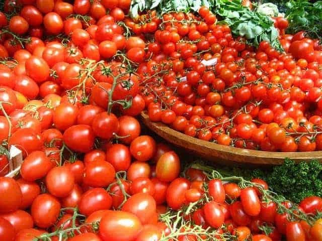 много помидоров на мисочках