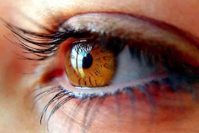 глаз женщины с длинными ресницами