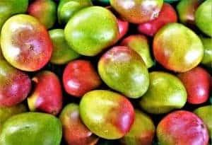 Африканское манго
