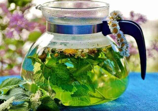 травяной чай в горшке