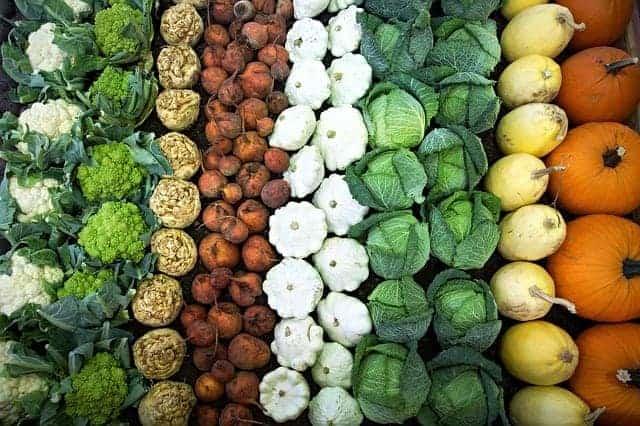 овощи, расположенные рядами