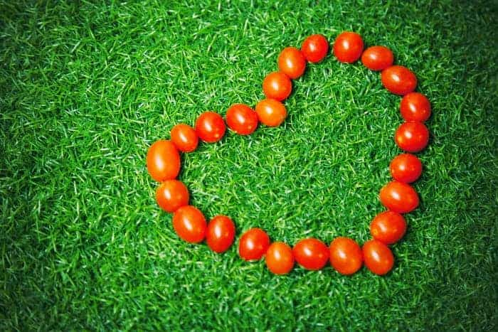 Помидоры, уложенные в сердце на траве.