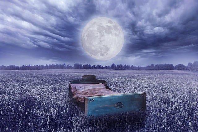 реальность мечты - кровать на лугу, в полнолуние.