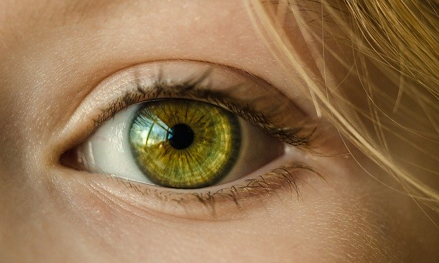 Женский глаз