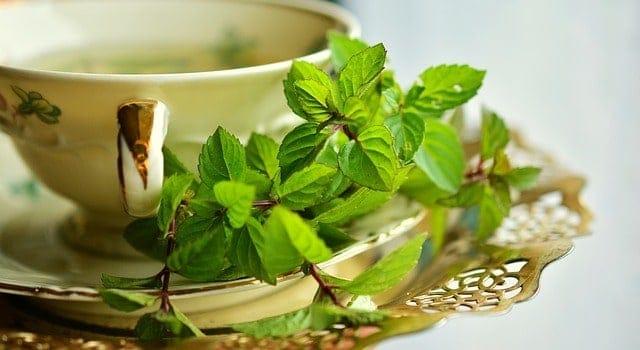 травяной настой в чашке