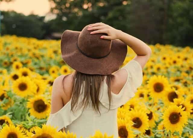 женщина, идущая по полю подсолнухов